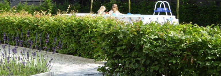 15 tuinontwerp-achtertuin-tilburg-2