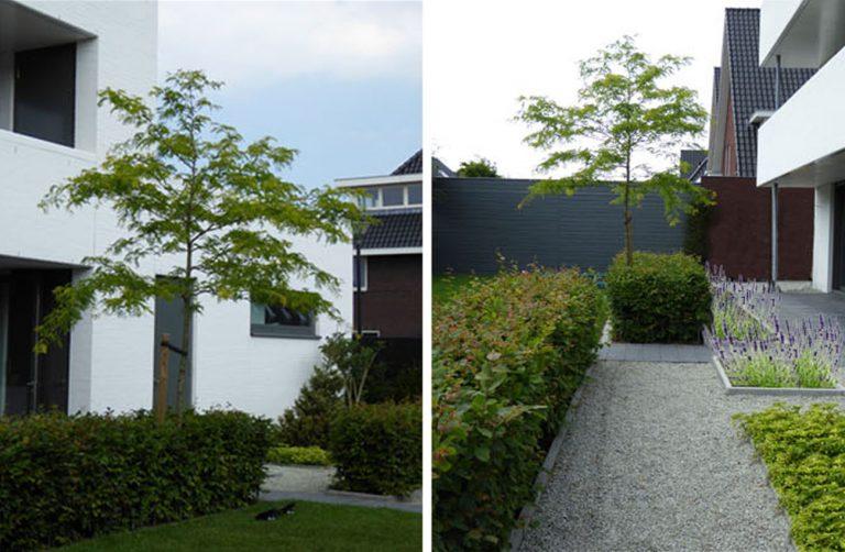 15 tuinontwerp-achtertuin-tilburg-4