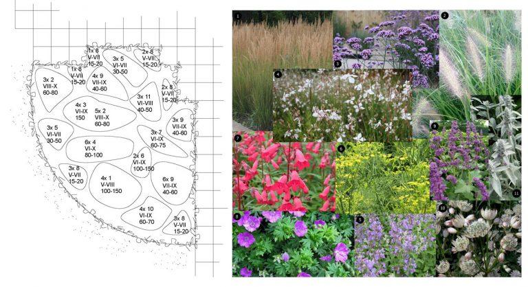 43 tuinontwerp-beplantingsplan-boxtel
